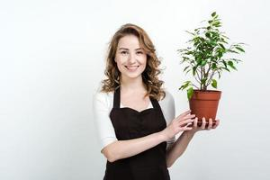 Cheerful woman holding a decorative green plant in the pot looking at the camera. - Concept  ecology photo