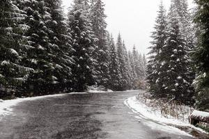 scenic view of the road with snow and mountain and giant trees background in winter season. Morske Oko photo