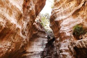 Hermosa vista de gran angular del increíble cañón de formaciones de arenisca. las inundaciones y el agua de lluvia tallaron las paredes del cañón de arenisca en el tiempo en formas escultóricas foto
