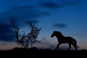 silueta, de, caballo, juguete, en, ocaso, plano de fondo foto