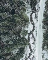 Aerial view of off road vehicle in winter forest trail photo