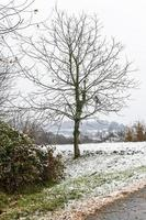 First snow on the hill towns. Between autumn and winter photo