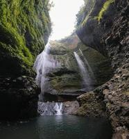 Madakaripura waterfall flowing on rock valley with plants in national park photo