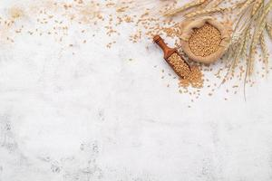 Wheat ears and wheat grains set up on white concrete background. photo