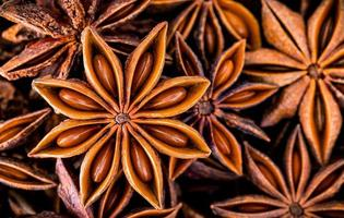 Chinese star anise close up background. Dried star anise spice fruits top view. photo