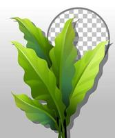 Green nature leaves with round frame vector