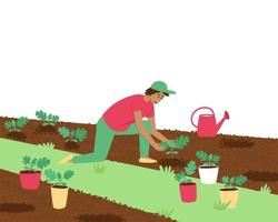 A farmer man is planting watermelon sprouts vector