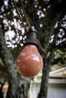 bombilla de luz de colores foto