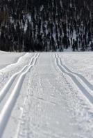doble pista de esquí nórdico foto