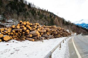 Firewood stacked next to the road in winter photo