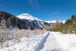 pista construida en la nieve para una ruta de senderismo foto