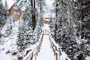 Snow covered bridge in forest photo