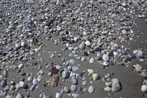 Pebble texture on the Aegean coast in Greece photo