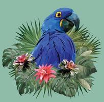 Hyacin macaw bird with Amazon leaves vector