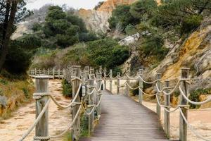 Wooden bridging in forest. photo