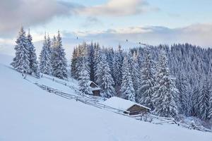 Fantastic winter landscape, the steps that lead to the cabin. Magic event in frosty day. In anticipation of the holiday. Dramatic scenes. Carpathian, Ukraine, Europe photo