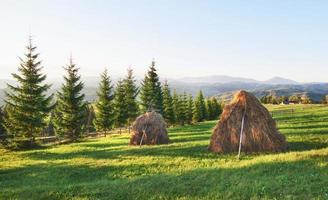 pajar en la puesta del sol. prado, pedazo de pastizal, especialmente uno usado para heno. montañas de los cárpatos, ucrania foto