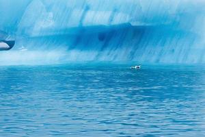 Blue ice at Icelake Jokulsarlon Iceland. Glacier close up photo