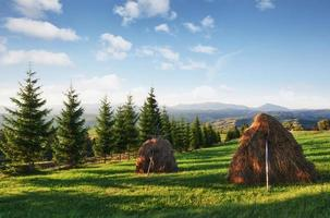 Beautiful summer mountain landscape at sunshine. View of the meadow fenced fence. Rural landscape photo