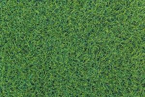 raya blanca en el campo de fútbol verde foto