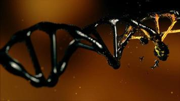 Destruction of DNA in three-dimensional space video