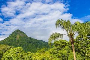 montaña abraao pico do papagaio con nubes ilha grande brasil. foto