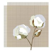 Cotton fabric icon with cotton flower. Nature floral background. vector