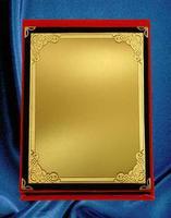 Muestras de placas para campeonatos, logros y conmemorativas. foto