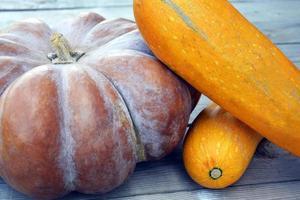 Huge ripe pumpkin and zucchini close-up. Harvest. photo