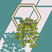 Pilea Plant Illustration. Hanging Plants Vector Illustration. Beautiful Pilea Plant Illustration As Wall Decoration.