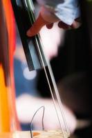 Detail of double bass player during in show photo