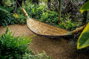 Bamboo cradle in the park photo