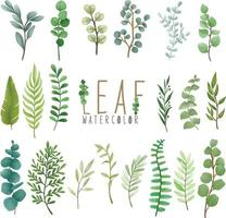 Set of watercolor painted Leaf, Green leaves clipart. Hand drawn isolated on white background vector