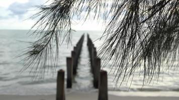 Pôle abandonné du pont cassé à la plage video