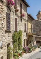 Flowers in ancient street located in Spello village. Umbria Region, Italy. photo