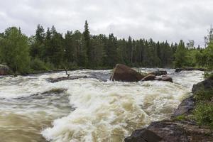 Whitewater en el río Torne en Norrbotten Suecia. foto
