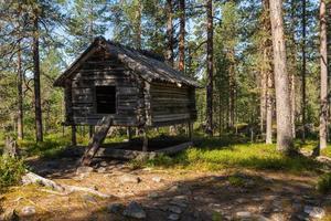 Antigua casa de madera en el bosque en el norte de Suecia utilizada para el almacenamiento de alimentos foto