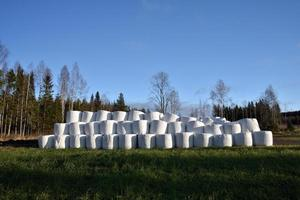 Pile with ensilage conservated in plastic photo