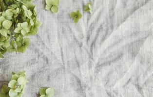 Flatlay of green hydrangea on gray textile background photo
