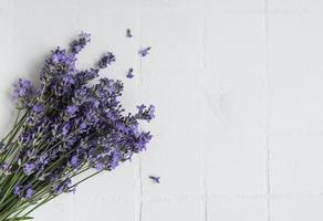 Fresh flowers of lavender bouquet photo