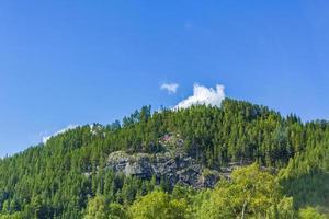 Bandera noruega en una colina boscosa en la aldea foto