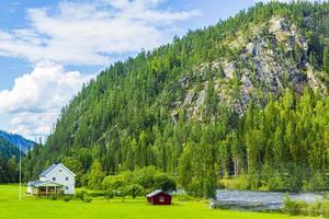 Conduciendo por Noruega en la aldea de verano, montañas y vistas al fiordo. foto