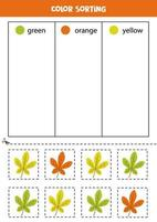 Sort autumn leaves by colors. learning colors for children. vector