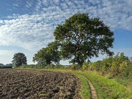 Camino y campo arado en Bishopthorpe, North Yorkshire, Inglaterra foto