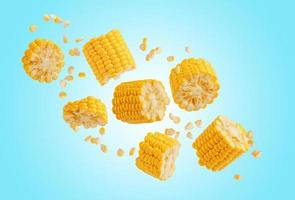 Broken flying sweet corn cob with grains on blue background. Design element for product label, catalog print. photo