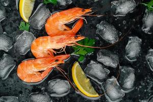 Tiger prawns with ice, lemon and parsley on dark background. Flat lay, copy space photo