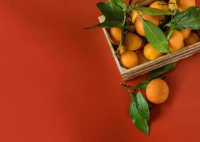 Orange tangerines with green foliage in the wood basket on red background photo