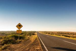 kangaroo crossing road sign photo