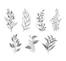 set of black and white monochrome leaves vector