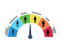 Tabla de categorías de IMC, índice de masa corporal y escala de masa de personas. peso muy bajo, bajo peso, óptimo, sobrepeso, obesidad, obesidad severa control gráfico de la salud. ilustración vectorial vector